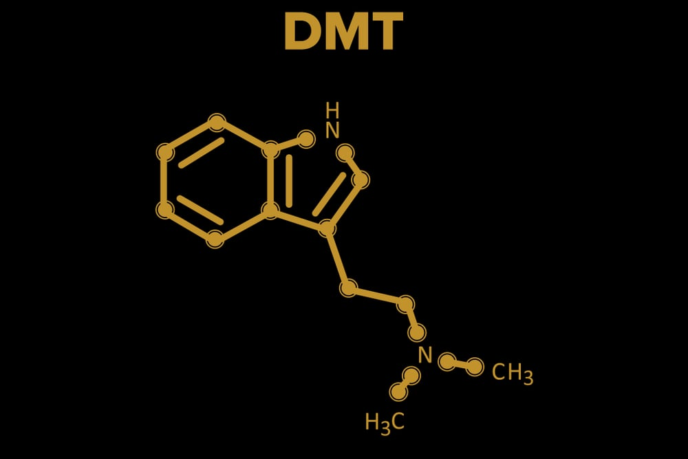chemical makeup of DMT
