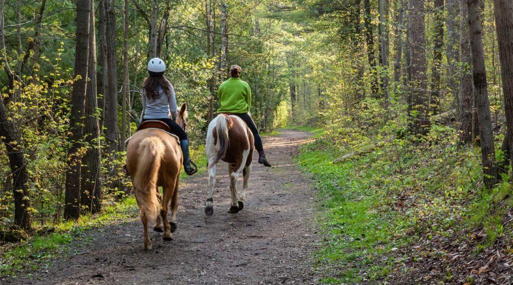 ladies riding horseback on a trail during equine therapy